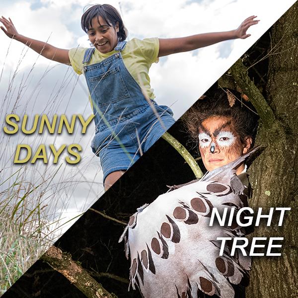 Sunny Days/Night Tree image